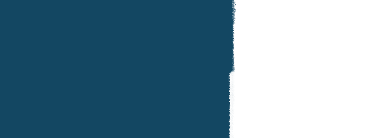 Background painted half navy and half white